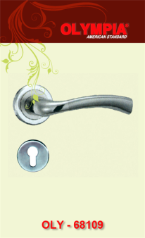 khóa cửa tay gạt hai vung